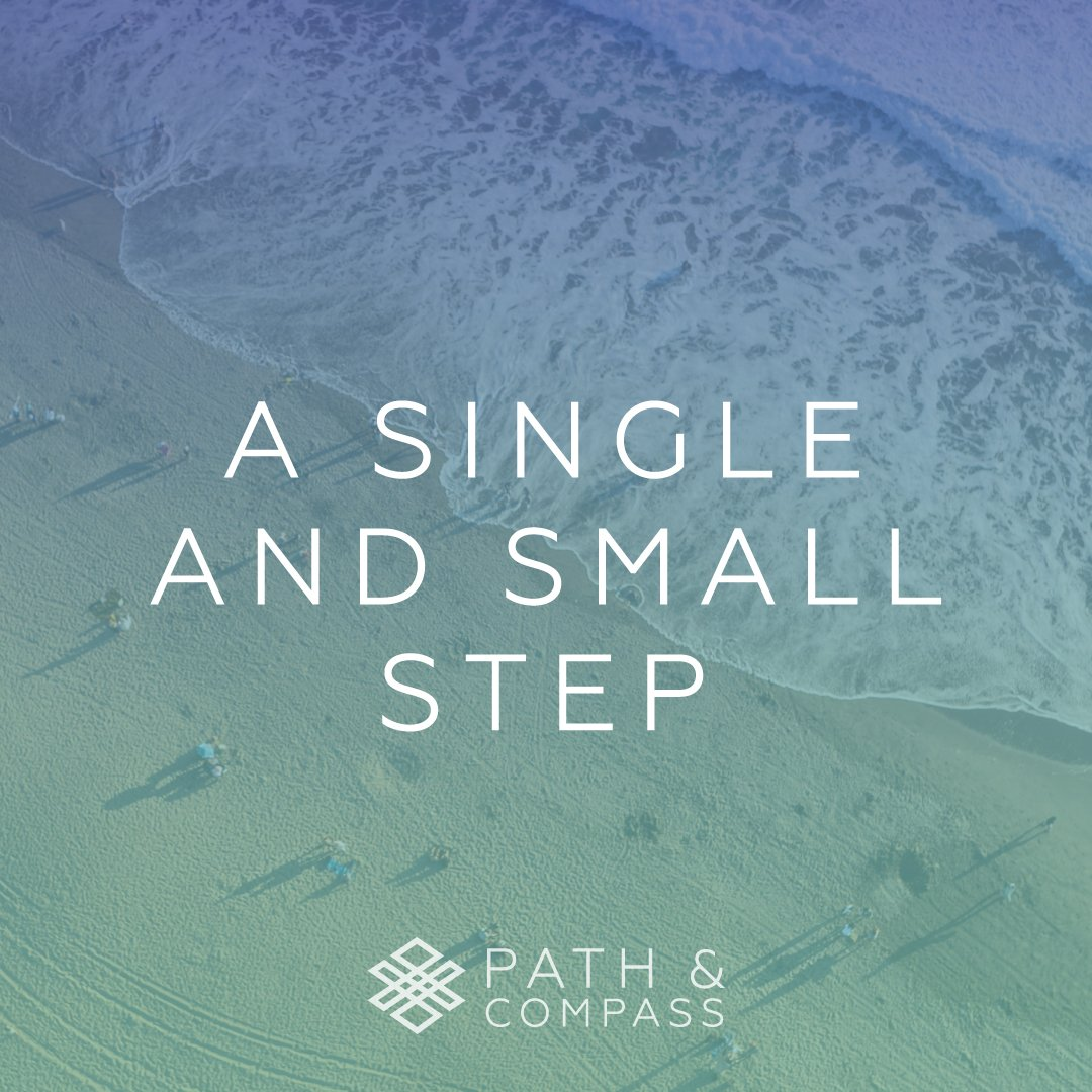 A Single and Small Step