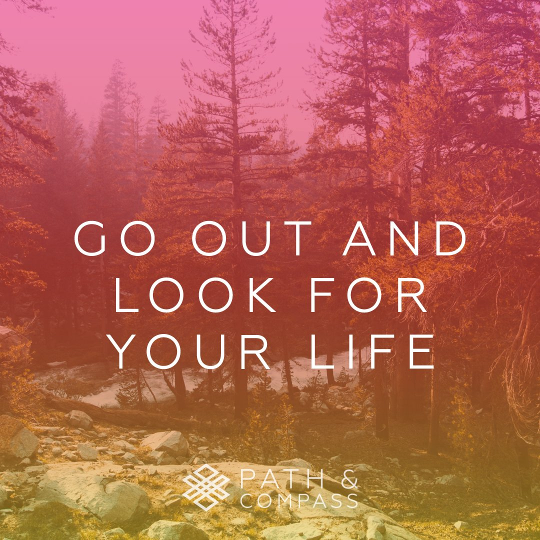 Go Out and Look for Your Life